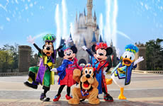 Tokyo with Disney Land Package 5D4N